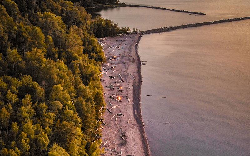 aerial view of beach, green treetops and water is calm