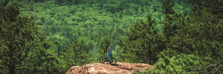 Biker on ledge in forested lansdcape.