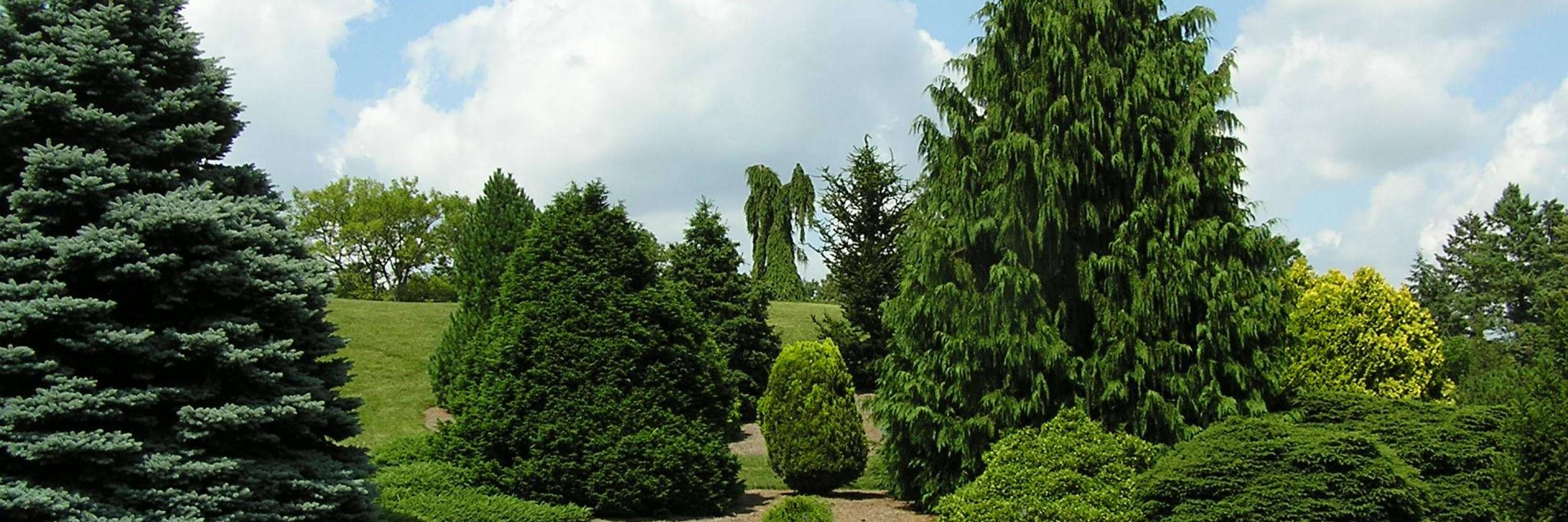 view of the gardens, trimmed trees, cloudy sky, lawn perfectly mowed