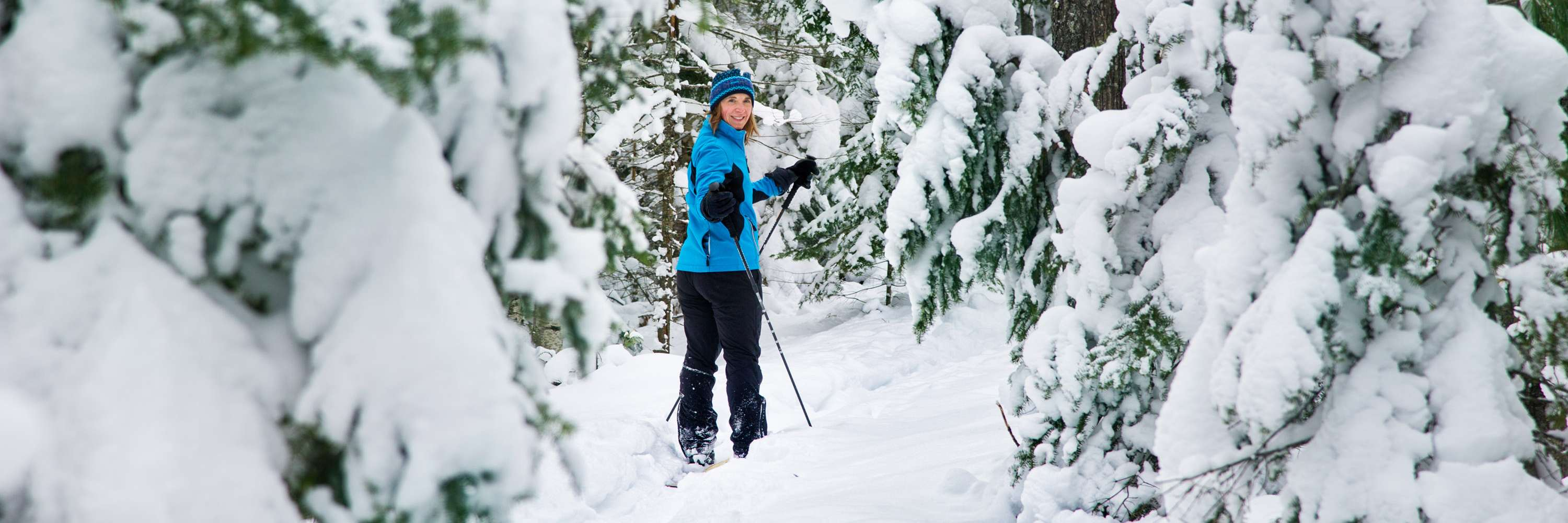 Cross country skier in snowy forest