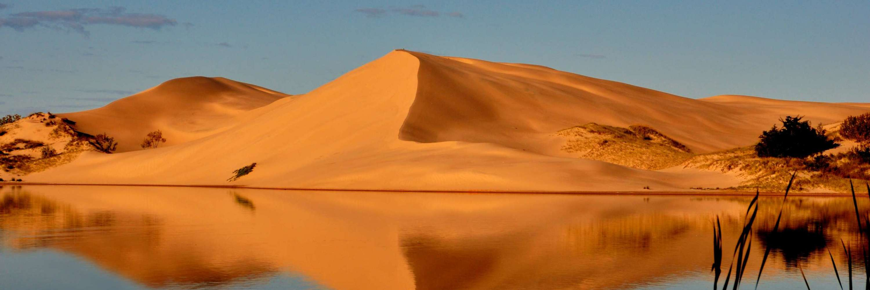 Silver Lake sand dunes in the summer