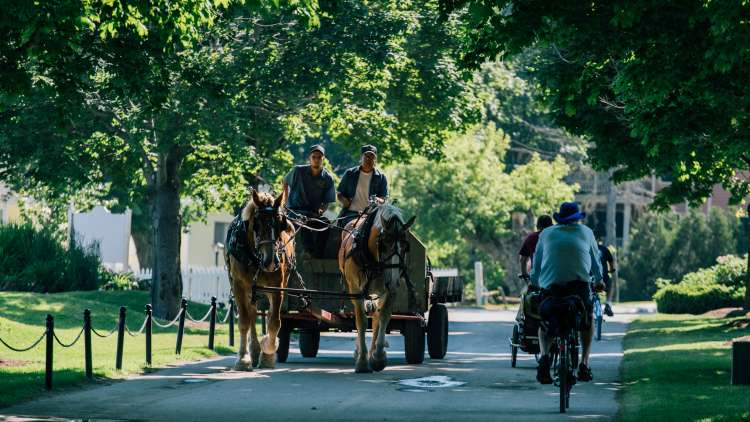 Horse carriage and bike riders on Mackinac Island road