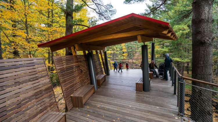balcony at Dow Gardens Canopy Walk during fall