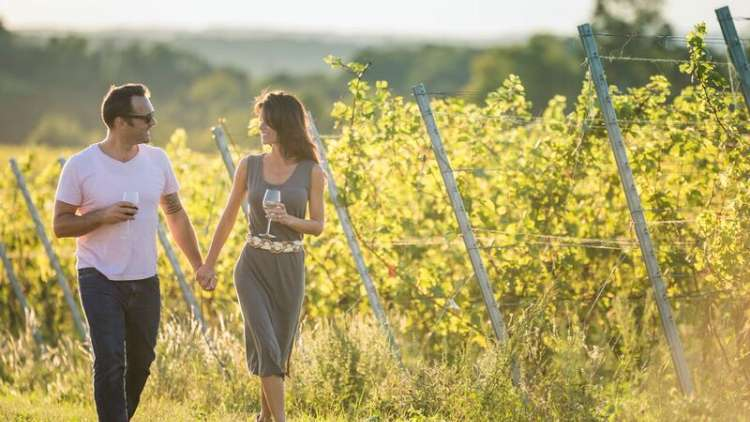 Wineries on Lake Michigan