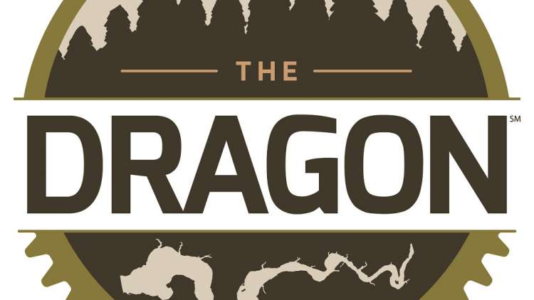 logo of the dragon trail