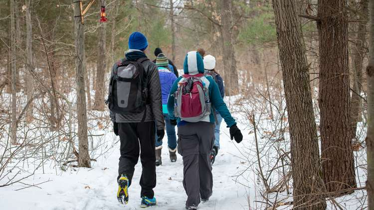 Group of hikers on snowy trail.