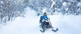 Person snowmobiling through Upper Peninsula forest