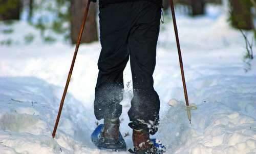 5 Things to Know About Snowshoeing in Michigan
