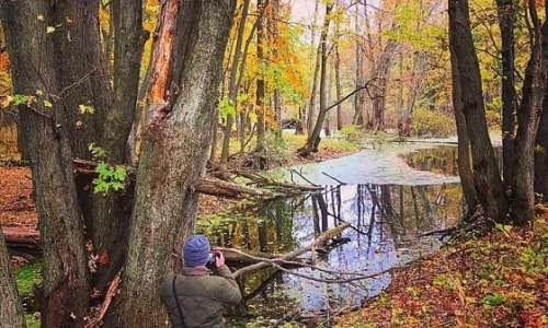 6 Ways to Take a Fall Color Tour in the Great Lakes Bay Region
