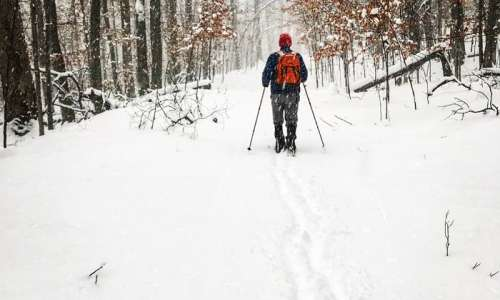 How to Make Your Own Snowshoes at Michigan State Parks