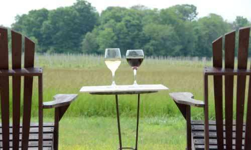 Unwind at These 15 Southwest Michigan Wineries This Season