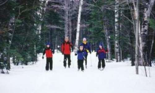 Cross-Country Skiing in Pure Michigan