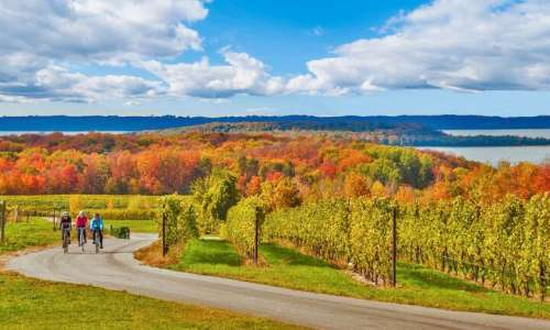 Experiencing the Great Outdoors in a Traverse City Fall