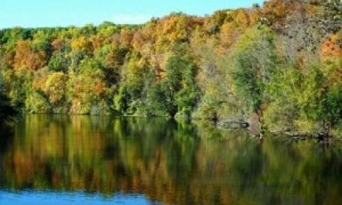 Fall Foliage at Huron River