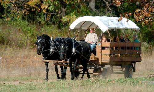Here's What You Can't Miss This Fall in Livingston County