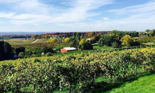 16 Stops for a Coastal Road Trip through Leelanau and Old Mission