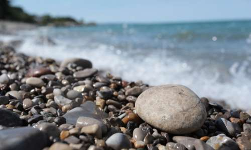 Where to Find Petoskey Stones in Michigan