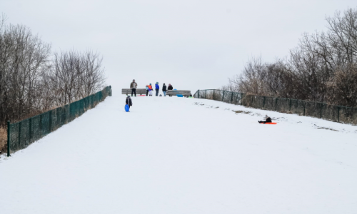 Kids playing on sledding hill