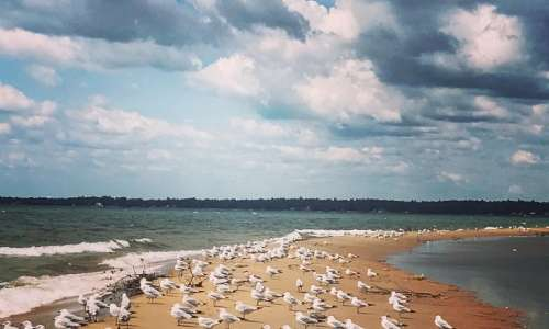 Things to Do in Oscoda During the Summer