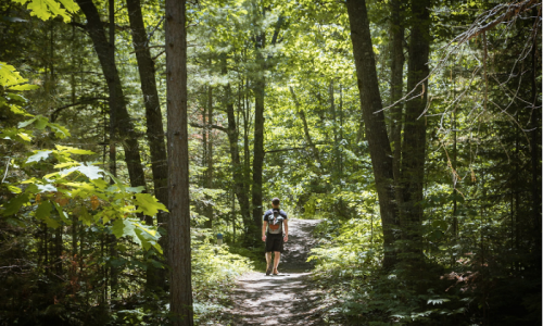 Trail Running: How to Hit Your Stride on Michigan Trails