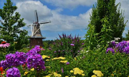 DeZwaan Windmill in Holland
