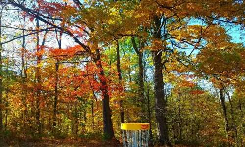 15 Fantastic Disc Golf Courses in Michigan