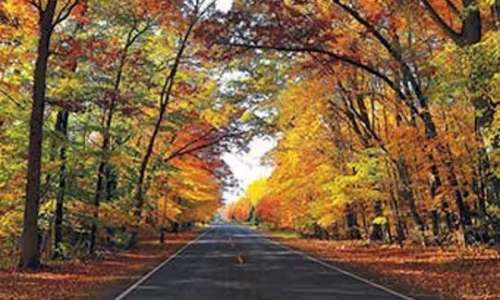 "Northern Lower Peninsula County Road Agencies ""Don't Miss"" Fall Colors Routes"