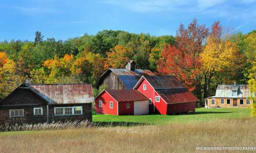 8 Rustic Michigan Barns Worth a Photograph