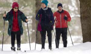 group of cross country skiers on snowy trail