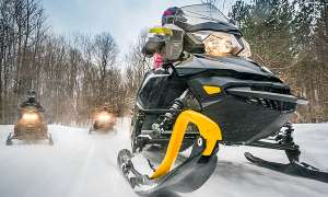 Snowmobiles traveling through snowy forest