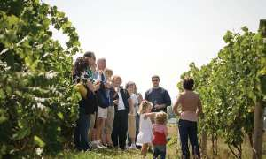 Tour group in vineyard at Chateau Chantal