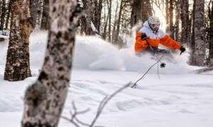 skiing the trees at mt bohemia, snow powder flying