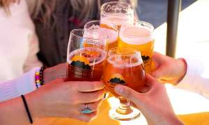 five craft brews toasting together - see only hands and drinks