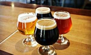 A flight of beer at a Michigan brewery