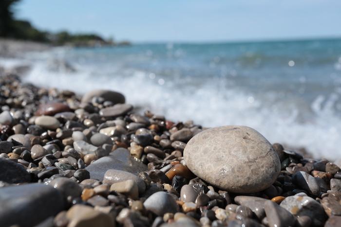 where to find petoskey stones in michigan michigan