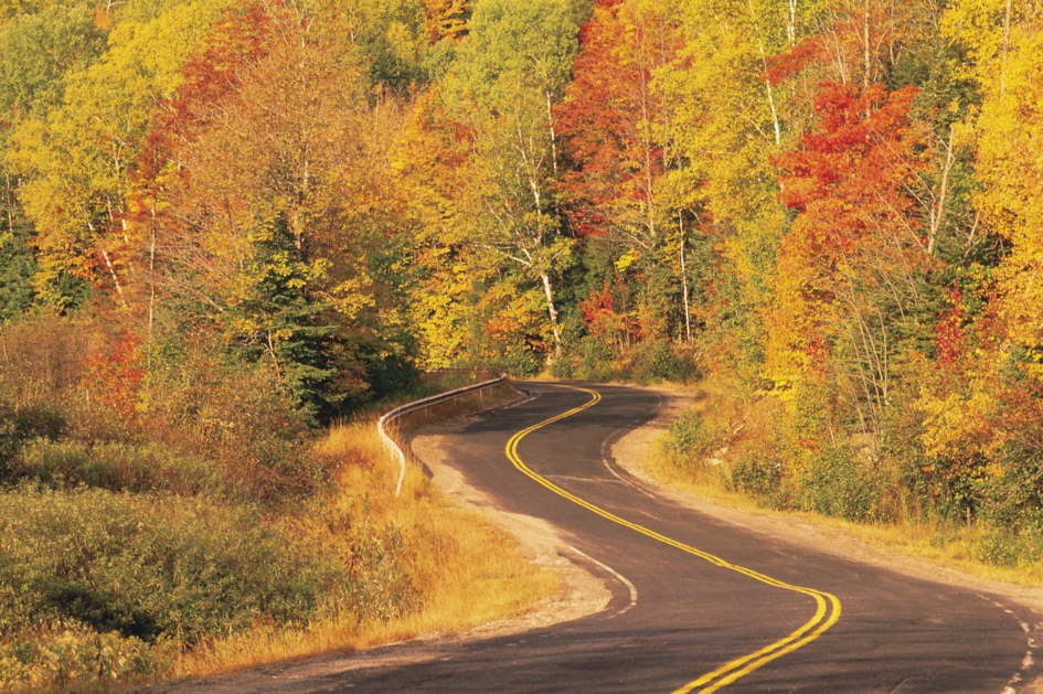 Curvy-road-bright-fall-color-trees-16844289.jpg