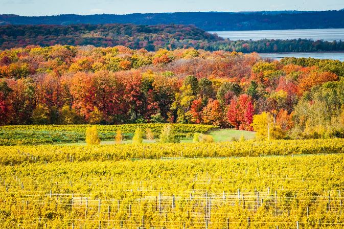 Colors Of Yellow beautiful places in michigan to visit in the fall | michigan