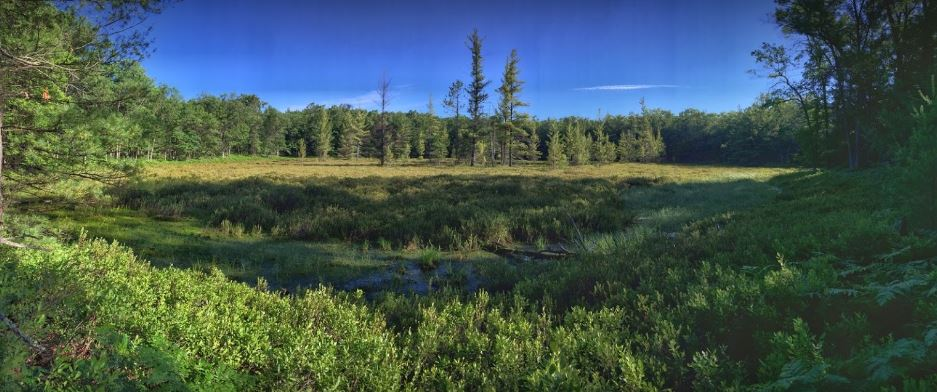 The Best Back Country Camping Sites in Michigan | Michigan