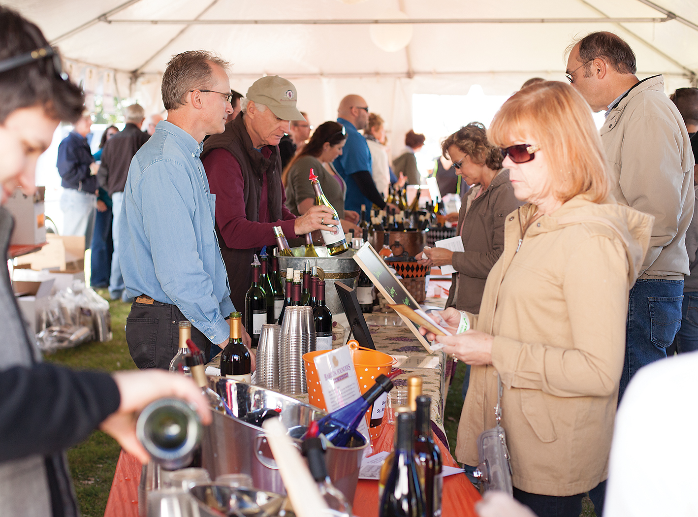 Wine Tasting at New Buffalo Harvest & Wine Festival.jpg