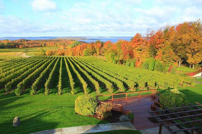 Chateau Grand Traverse in the Fall