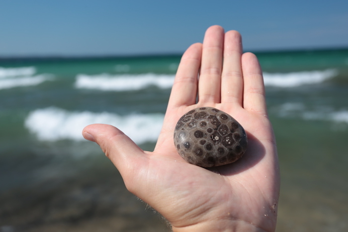 Best Beaches In Michigan To Find Petoskey Stones