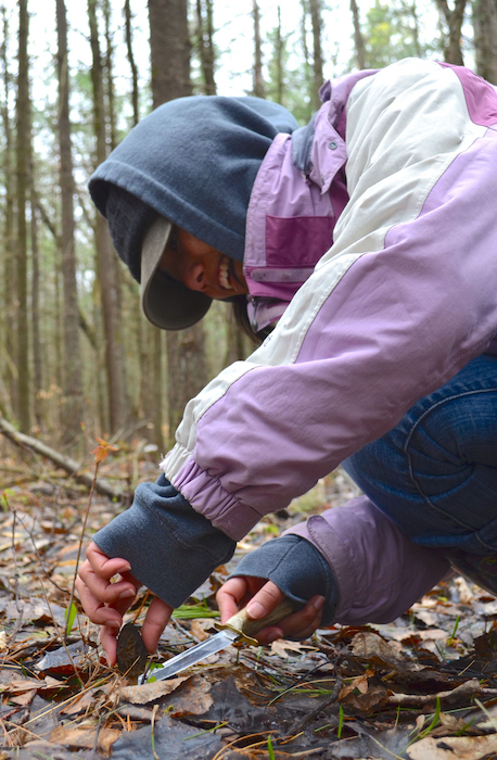 Picking Morel Mushrooms