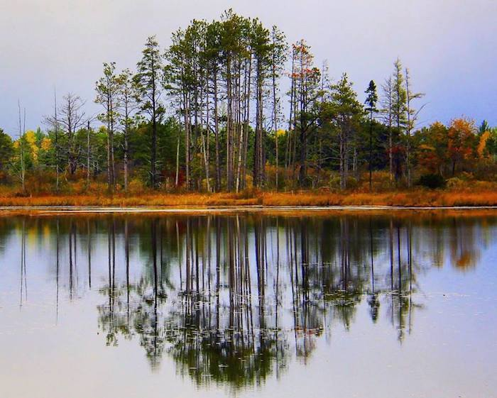 Seney Wildlife Refuge
