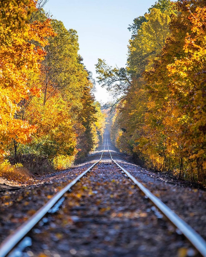 train-tracks-fall-munising.jpg