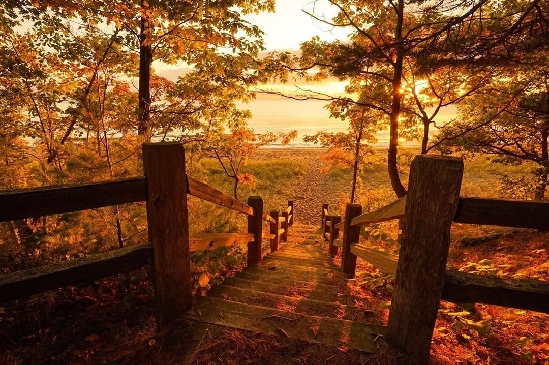 Pure Michigan Fall Color Update