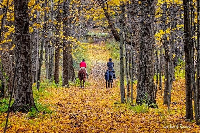 Fall Color Tours Michigan