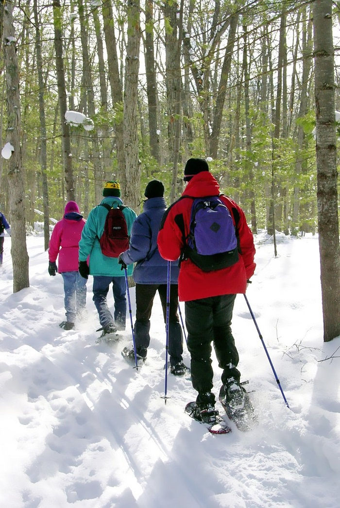 Snowshoeing at Chippewa Nature Center
