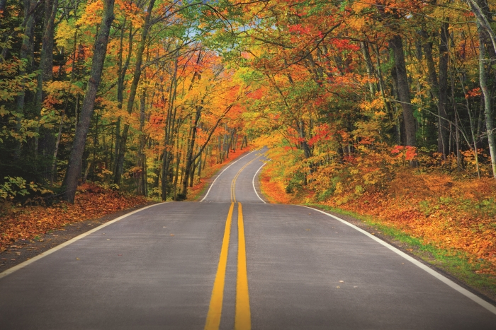 A road traveling through a autumn forest in the Keweenaw Peninsula Road.