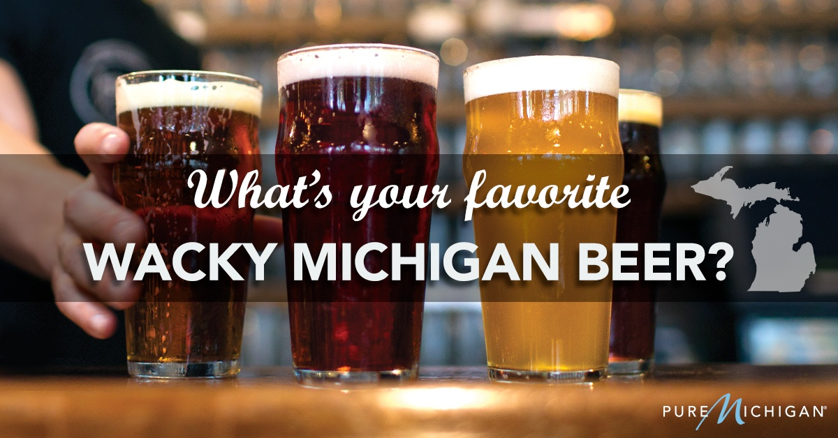 Cheers To Michigan Beer Here Are Our Fans Favorites